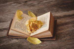 Menulis Buku LAris dan Bisa Mendatangkan Uang