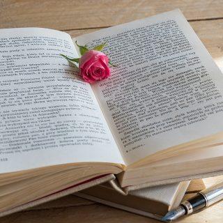 Menulis Buku LAris dan Mendatangkan Uang