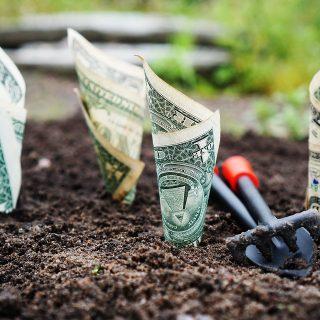 Mengelola Uang pada Investasi Reksa Dana