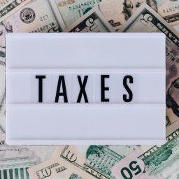 pajak umkm