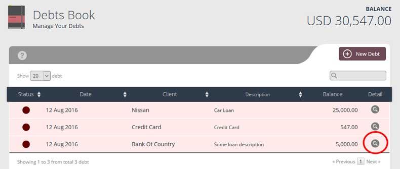 debt detail